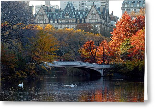 Greeting Card featuring the photograph Lake In Central Park by Yue Wang