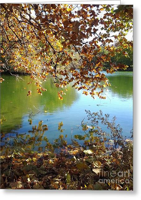 Lake In Early Fall Greeting Card by Susan Townsend