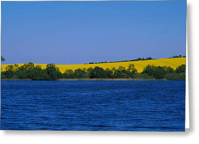 Lake In Front Of A Rape Field Greeting Card by Panoramic Images