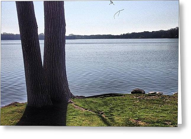 Lake In The Summer Greeting Card