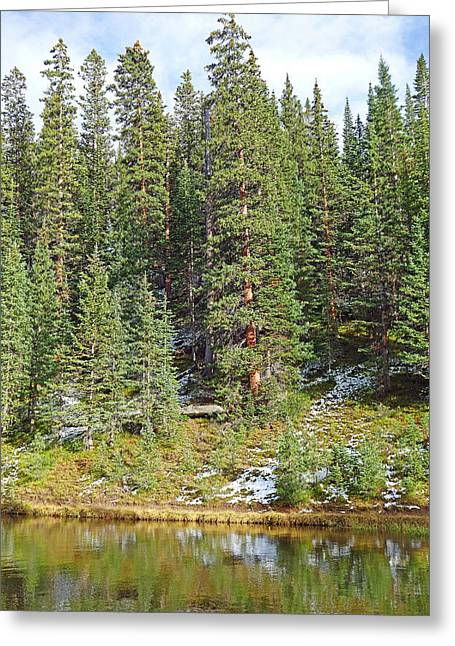 Lake Irene In Autumn Study 13-1 Greeting Card