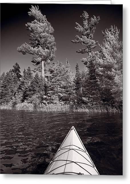 Lake Kayaking Bw Greeting Card
