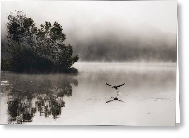 Lake Logan Fog And Heron - Flight Greeting Card