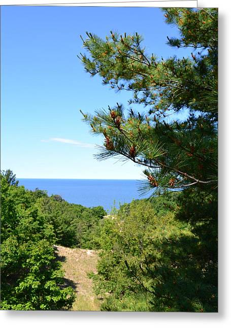Lake Michigan From The Top Of The Dune Greeting Card by Michelle Calkins