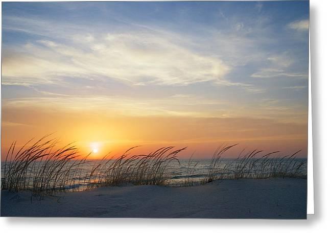 Lake Michigan Sunset With Dune Grass Greeting Card