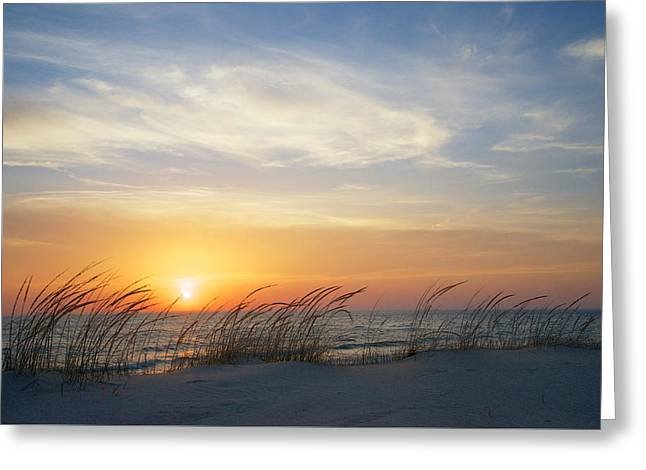 Lake Michigan Sunset With Dune Grass Greeting Card by Mary Lee Dereske