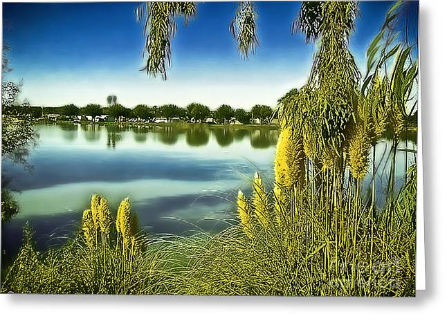 Lake Mindon Campground California Greeting Card