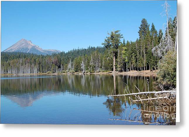 Greeting Card featuring the photograph Lake Of The Woods 4 by Debra Thompson