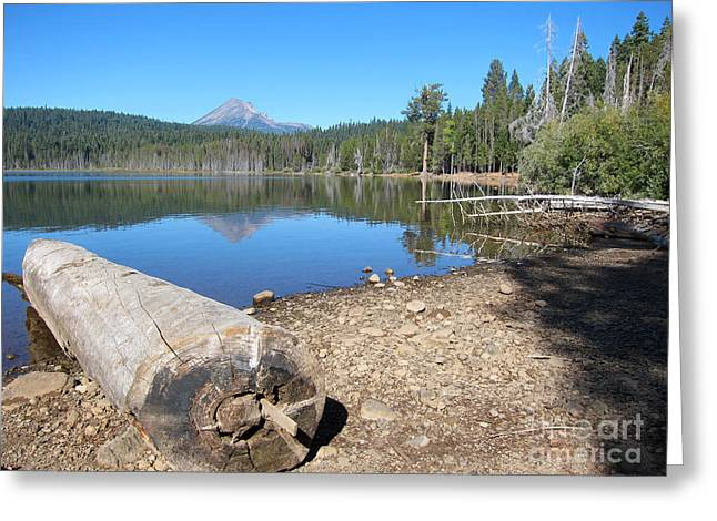Greeting Card featuring the photograph Lake Of The Woods 5 by Debra Thompson