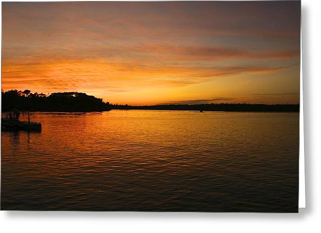 Lake Of The Woods Greeting Card by Andrew Johnson