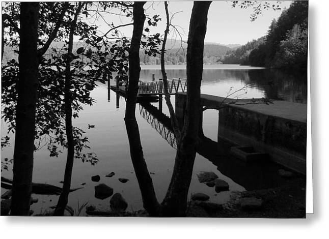 Lake Padden Reflection In Black And White Greeting Card