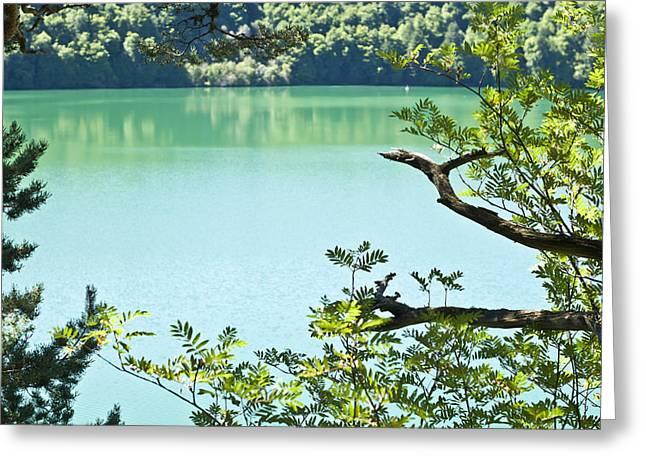 Lake Peaceful Greeting Card by Georgia Fowler