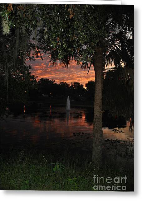 Lake Play Florida Greeting Card