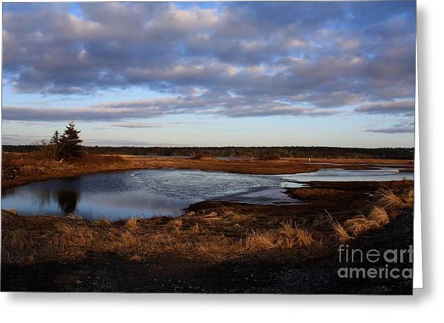Lake Reflection Greeting Card by Sandy MacNeil