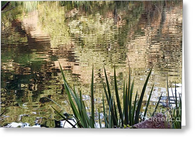 Greeting Card featuring the photograph Lake Reflections by Kate Brown