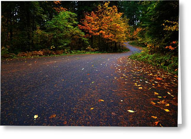 Greeting Card featuring the photograph Lake Road by Matt Hanson