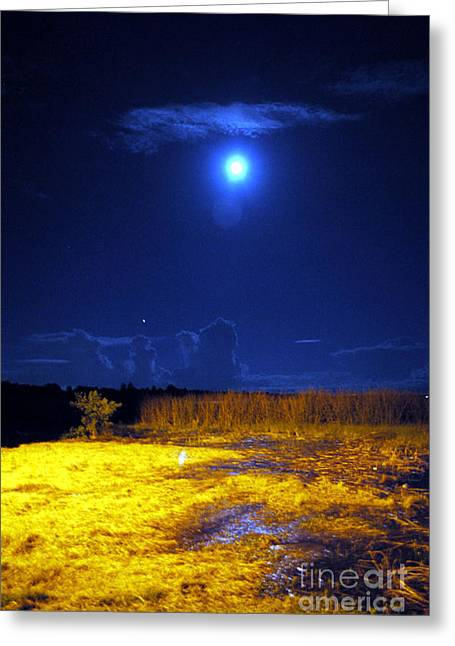 Moonrise Over Rochelle - Portrait Greeting Card