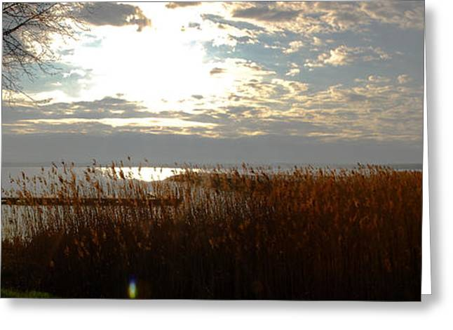 Lake Seneca Greeting Card by Gary Wightman