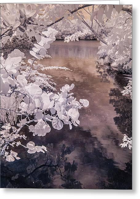 Lake Shadows Greeting Card