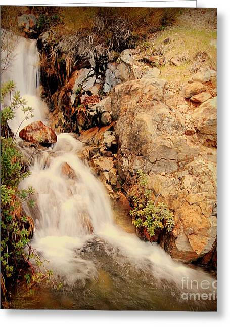 Lake Shasta Waterfall 2 Greeting Card by Garnett  Jaeger