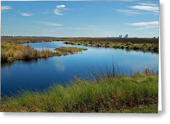 Lake Shelby Daytime  Greeting Card by Michael Thomas