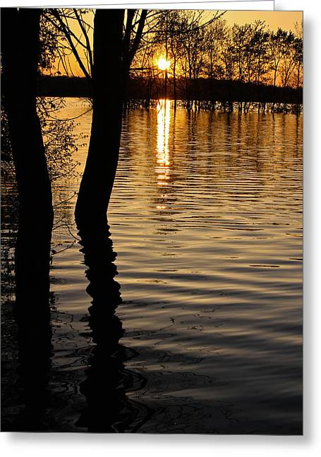 Lake Silhouettes Greeting Card by Julie Andel