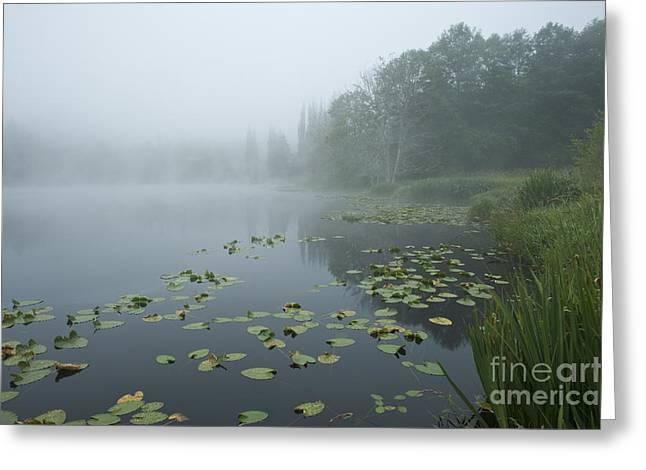Lake Sunrise In Fog Greeting Card