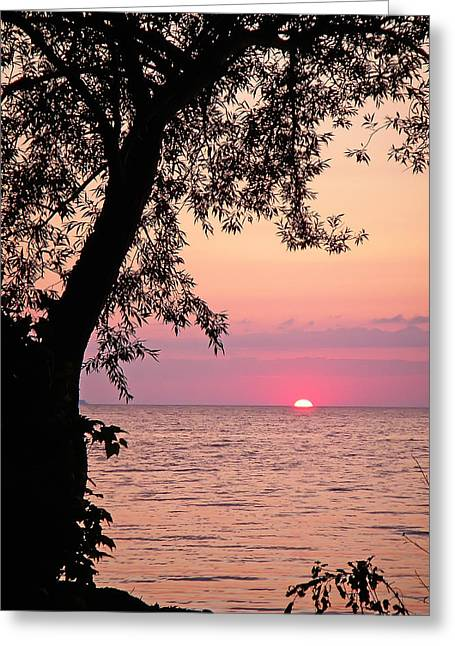 Lake Sunset Greeting Card by Aimee L Maher Photography and Art Visit ALMGallerydotcom