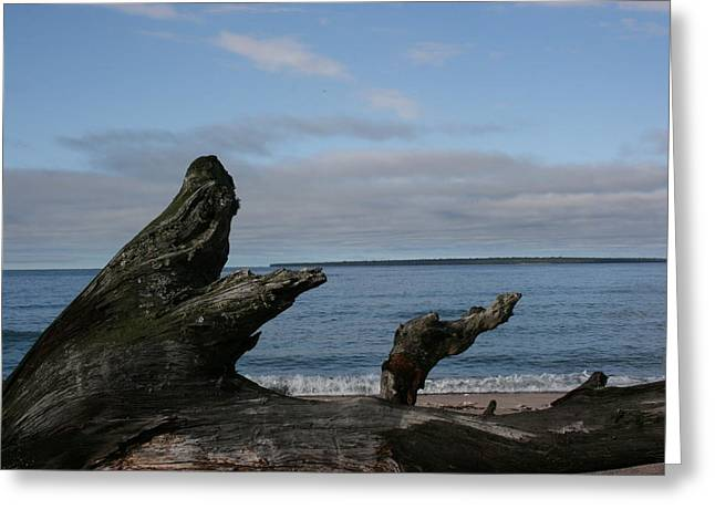 Lake Superior Greeting Card