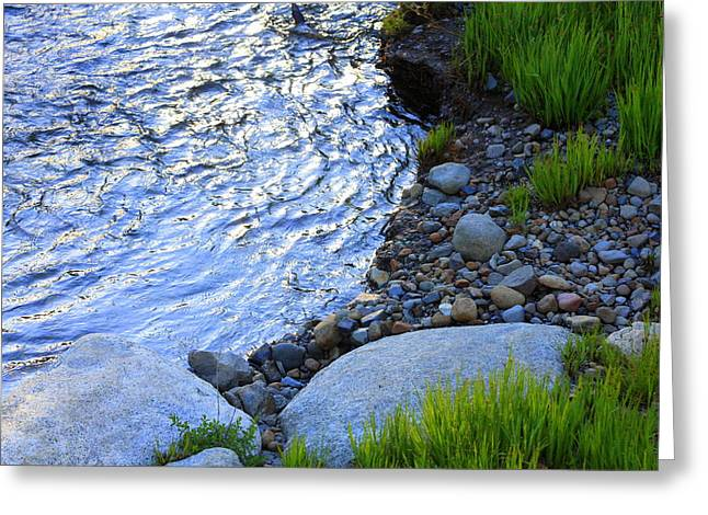 Lake Tahoe River's Edge Greeting Card by Anne Barkley
