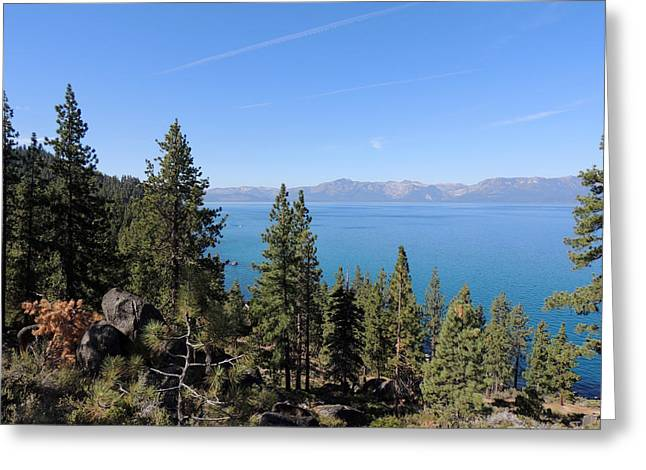 Lake Tahoe Through The Trees Greeting Card by Jayne Wilson