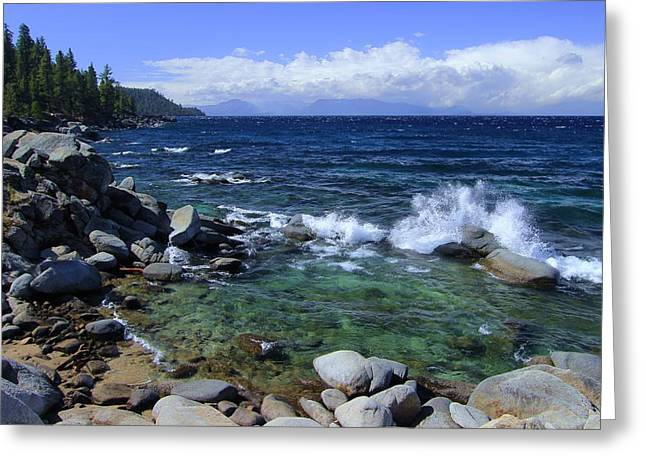 Lake Tahoe Wild  Greeting Card
