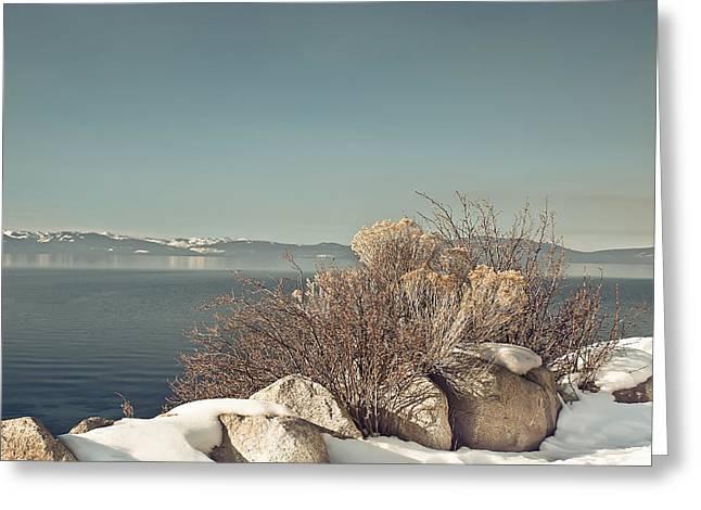 Lake Tahoe Winter Greeting Card by Kim Hojnacki