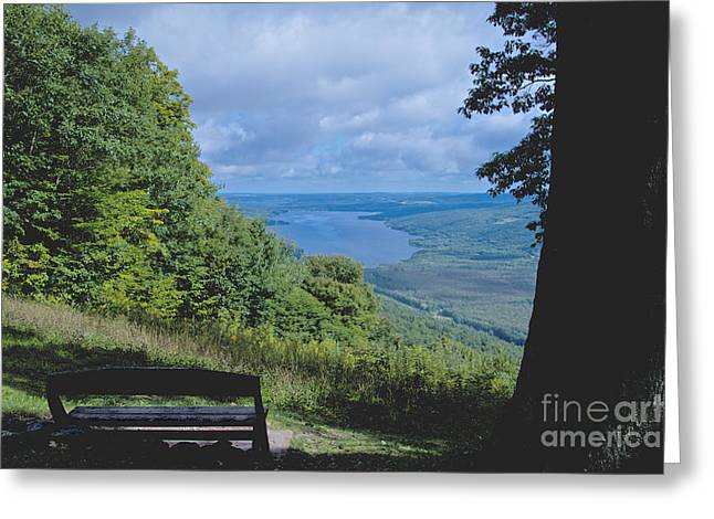Lake Vista Greeting Card