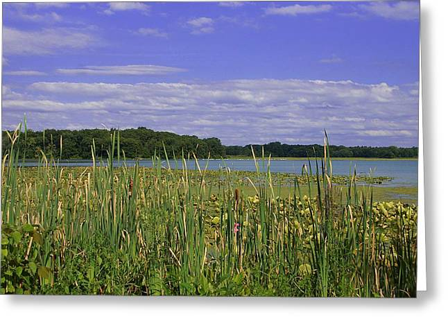 Lakes Of Indiana Greeting Card by Thomas Fouch