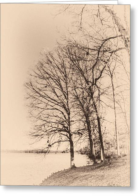 Lakeshore Park Greeting Card by Barry Jones