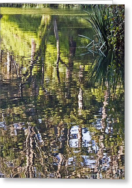 Greeting Card featuring the photograph Lakeshore Reflections by Kate Brown