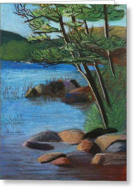 Lakeside Pines Greeting Card by Jane Croteau