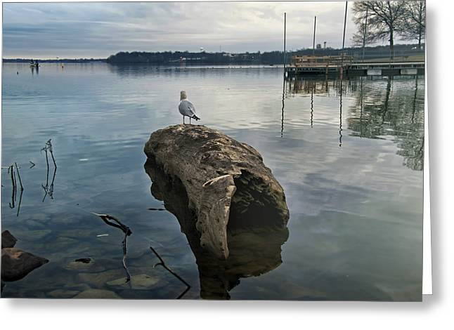 Lakeside Greeting Card by Steven  Michael