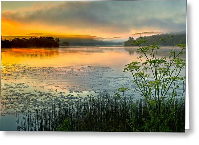 Lakeside Sunrise Greeting Card by Bill Wakeley