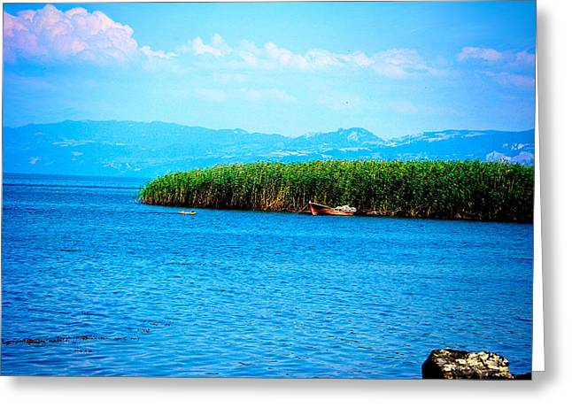 Greeting Card featuring the photograph Lakeview by Zafer Gurel