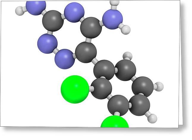 Lamotrigine Seizures Drug Molecule Greeting Card