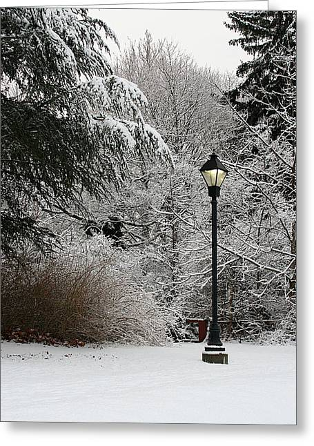 Lamp Post In Winter Greeting Card