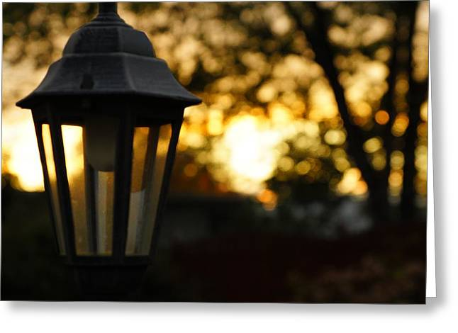 Greeting Card featuring the photograph Lamplight by Photographic Arts And Design Studio