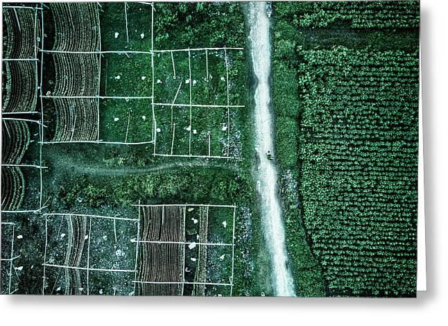 Land Of Idyllic Beauty Greeting Card by Zhou Chengzhou