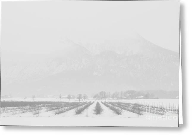 Land Of Snow Greeting Card