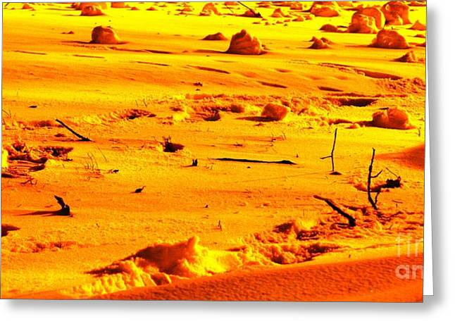 Landing On Mars Greeting Card by Michael Grubb
