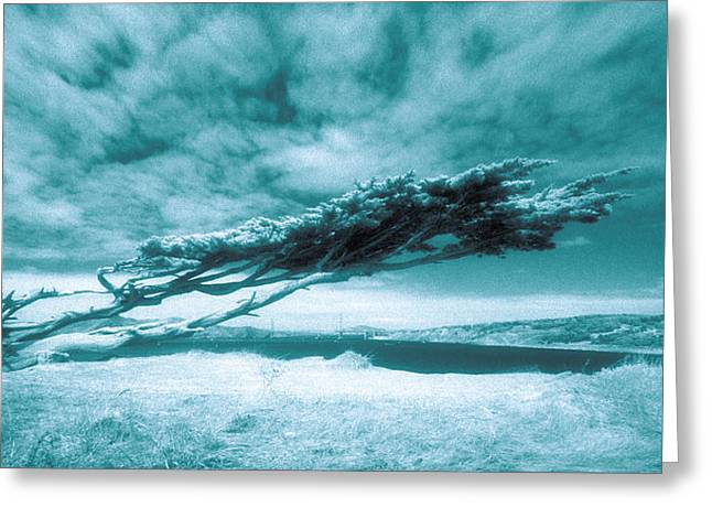 Lands End Greeting Card by Daniel Furon