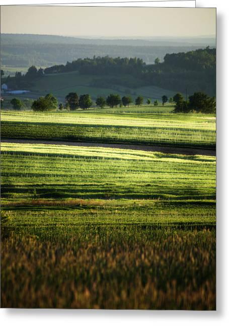 Landscape Greeting Card by Anna Gora