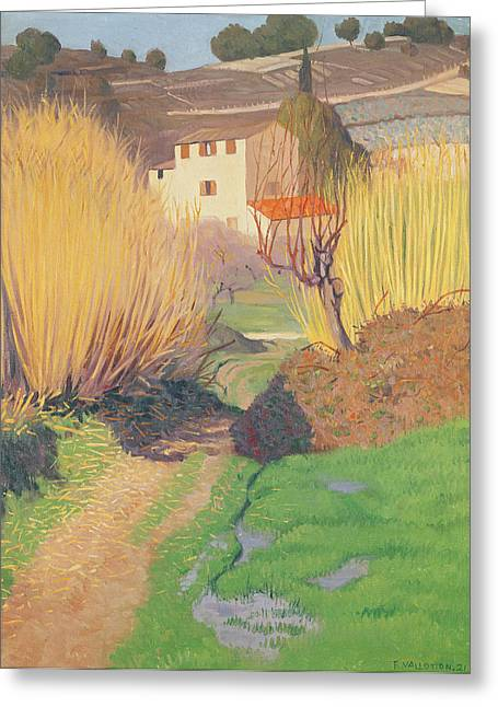 Landscape At Lagnes Greeting Card by Felix Edouard Vallotton